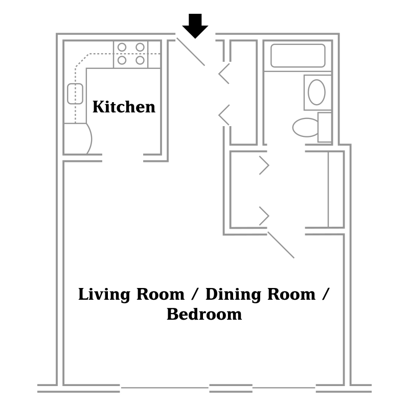 The Manors Efficiency Apartment